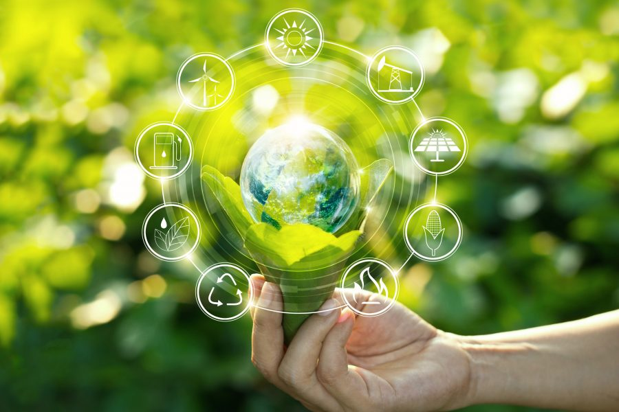 Hand holding light bulb against nature on green leaf with icons energy sources for renewable, sustainable development. Ecology concept. Elements of this image furnished by NASA.